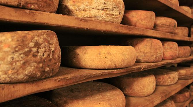 IMAGIER LCFF : Les fromages