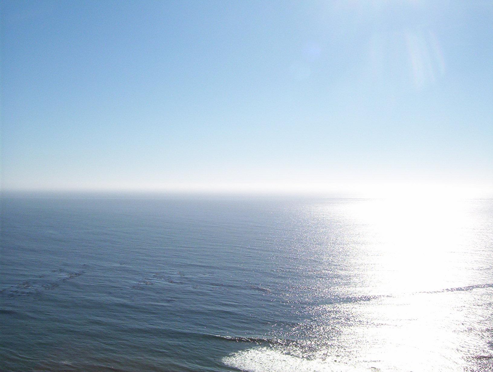 Une grande aventure écologique en mer