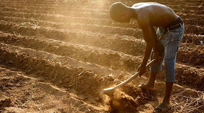 L'Afrique à la COP 21