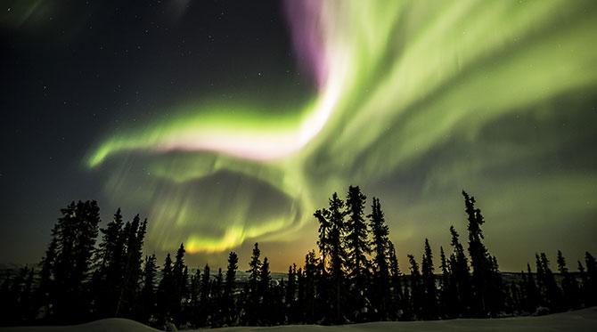 Le Yukon, la ruée vers la culture