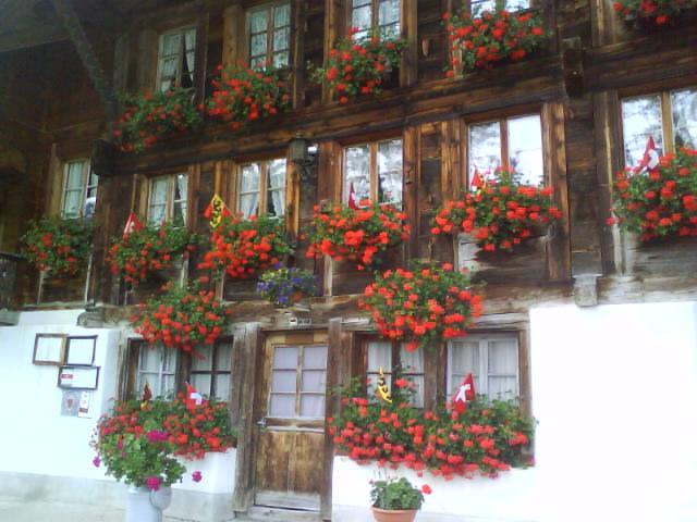 Visite de Gruyères et ses alentours