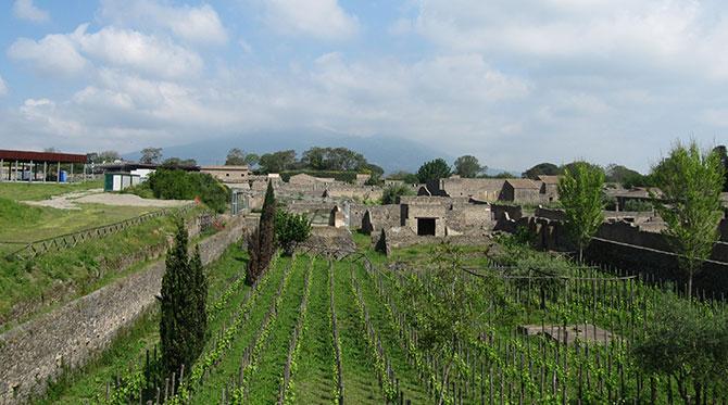 Le vin au temps des Romains