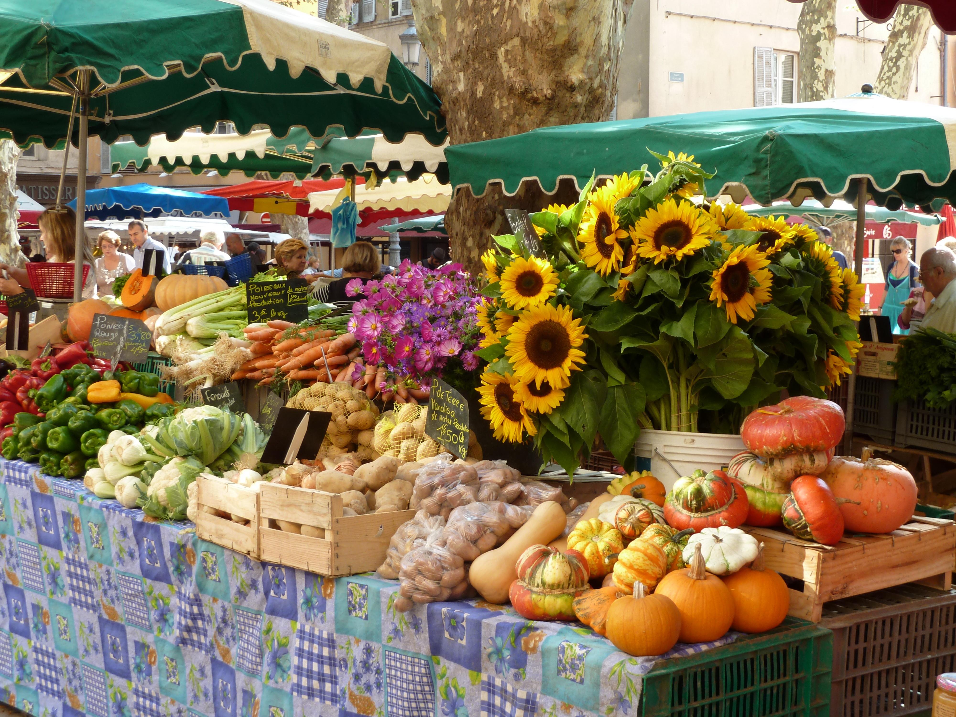 Le grand retour  des légumes d'antan(1)