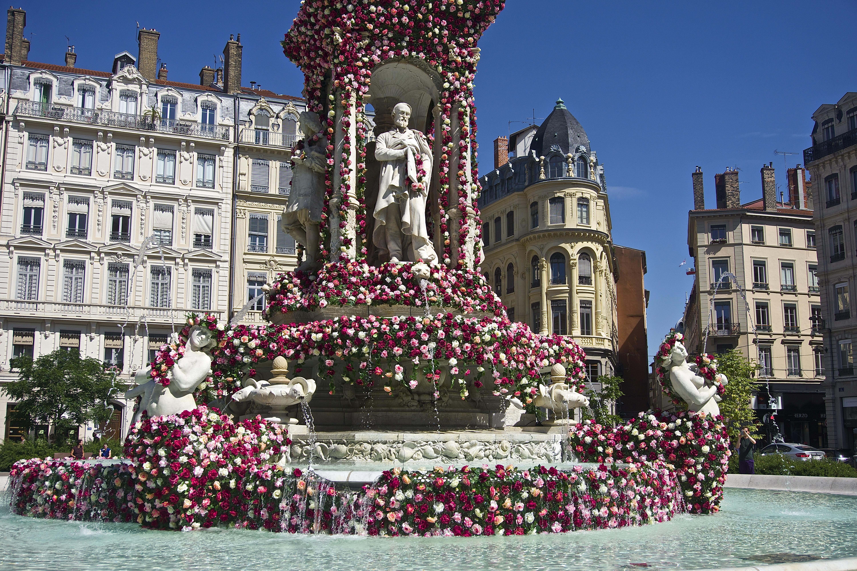 Lyon,  la vie en rose